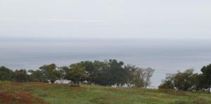 Ocean Behind Shiretoko
