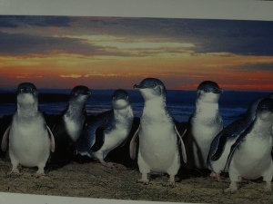 Since I didn't take photos, this is a photo I bought at the gift shop